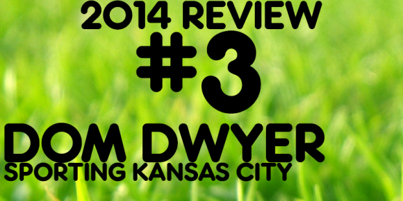 2014 REVIEW - Dwyer